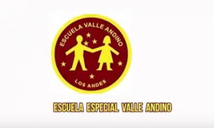 Escuela Especial Valle Andino
