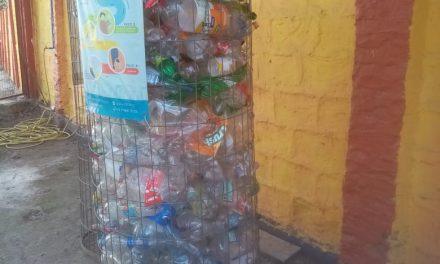 Programa de Integración Escolar de Los Andes se la juega por el reciclaje