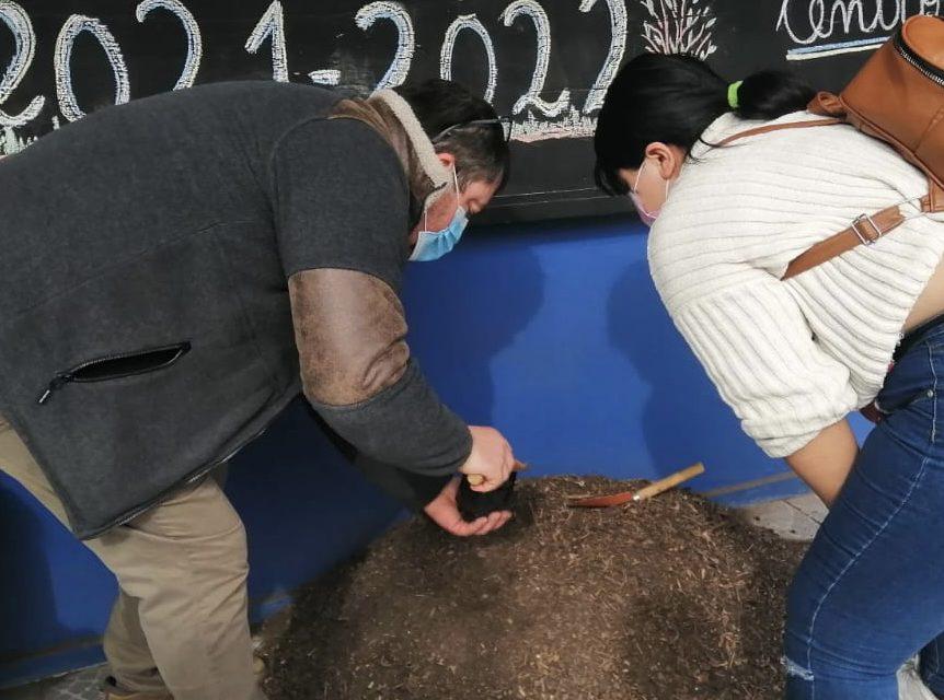 """En Liceo Bicentenario Técnico Amancay inician proyecto """"Apadrina un Árbol"""""""